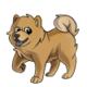 ChildChow Chow