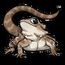 Adult1Eastern Bearded Dragon