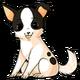 Chihuahuadog alt2