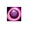 Apple Snail Egg