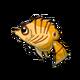 Babythreadfin3