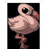 Flamingo1 alt5