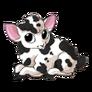 Sheep1 alt4