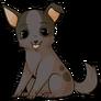 Chihuahuadog2 alt2