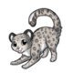 Snowleopard2 alt4