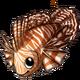 Lionfish3 alt3