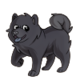 Child1Chow Chow