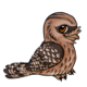 Tawnyfrogmouthchild5