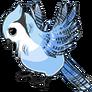 AdultBlue Jay
