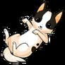 Chihuahuadog alt3