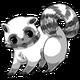 Raccoon34