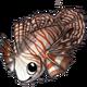 Lionfish3 alt2