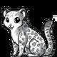 Snowleopard3 alt3