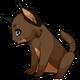 Browncaracalcat1