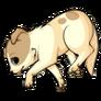Chocochihuahuadog1