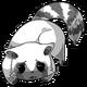 Raccoon14