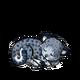Snowleopard1 alt5