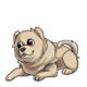 Baby2Chow Chow
