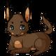 Browncaracalcat2