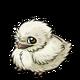 Tawnyfrogmouthbaby1