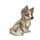 Child1Shetland Sheepdog