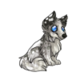 Child4Shetland Sheepdog