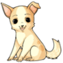 Stage2Chihuahua
