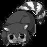 Raccoon13
