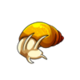 Child3Common Apple Snail