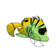 Childthreadfin4