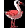 Flamingo3 alt4