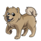 Child4Chow Chow