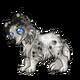 Teen4Shetland Sheepdog