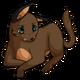 Browncaracalcat3