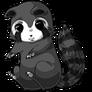Raccoon21