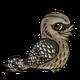 Tawnyfrogmouthchild1