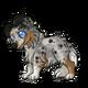Teen5Shetland Sheepdog