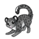 Snowleopard2 alt2