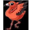 Flamingo4 alt5