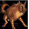 Adult3Brown Hyena