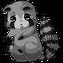 Raccoon26
