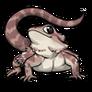 Adult3Eastern Bearded Dragon