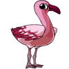 Flamingo3 alt3