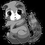 Raccoon22