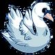 Teen(five)Mute Swan