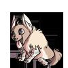 Baby5Brown Hyena