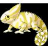 Chameleon4 alt4