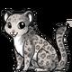 Snowleopard3 alt4