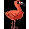 Flamingo3 alt5