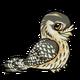 Tawnyfrogmouthchild3